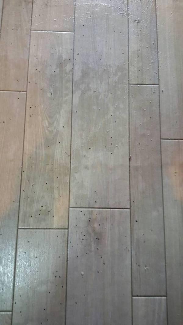 滋賀県草津市 剥離洗浄とエアコンクリーニング